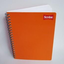 Cuaderno profesional raya...